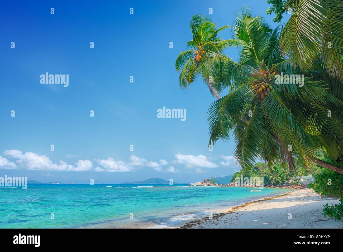 tropical beach anse pasquiere on praslin island seychelles - Stock Image