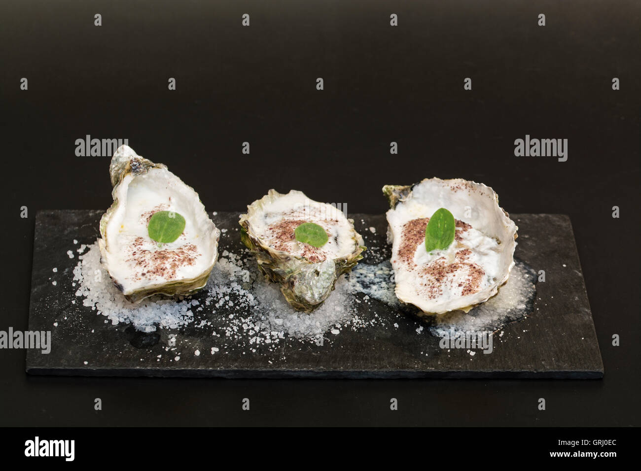 oysters with sea foam reduction on a bed of salt - Stock Image