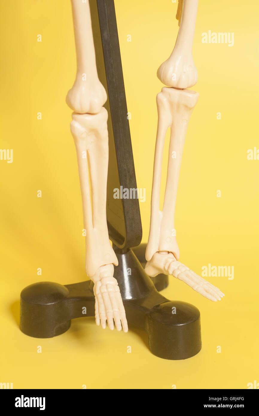 Skeleton Legs On Yellow Background Stock Photos Skeleton Legs On