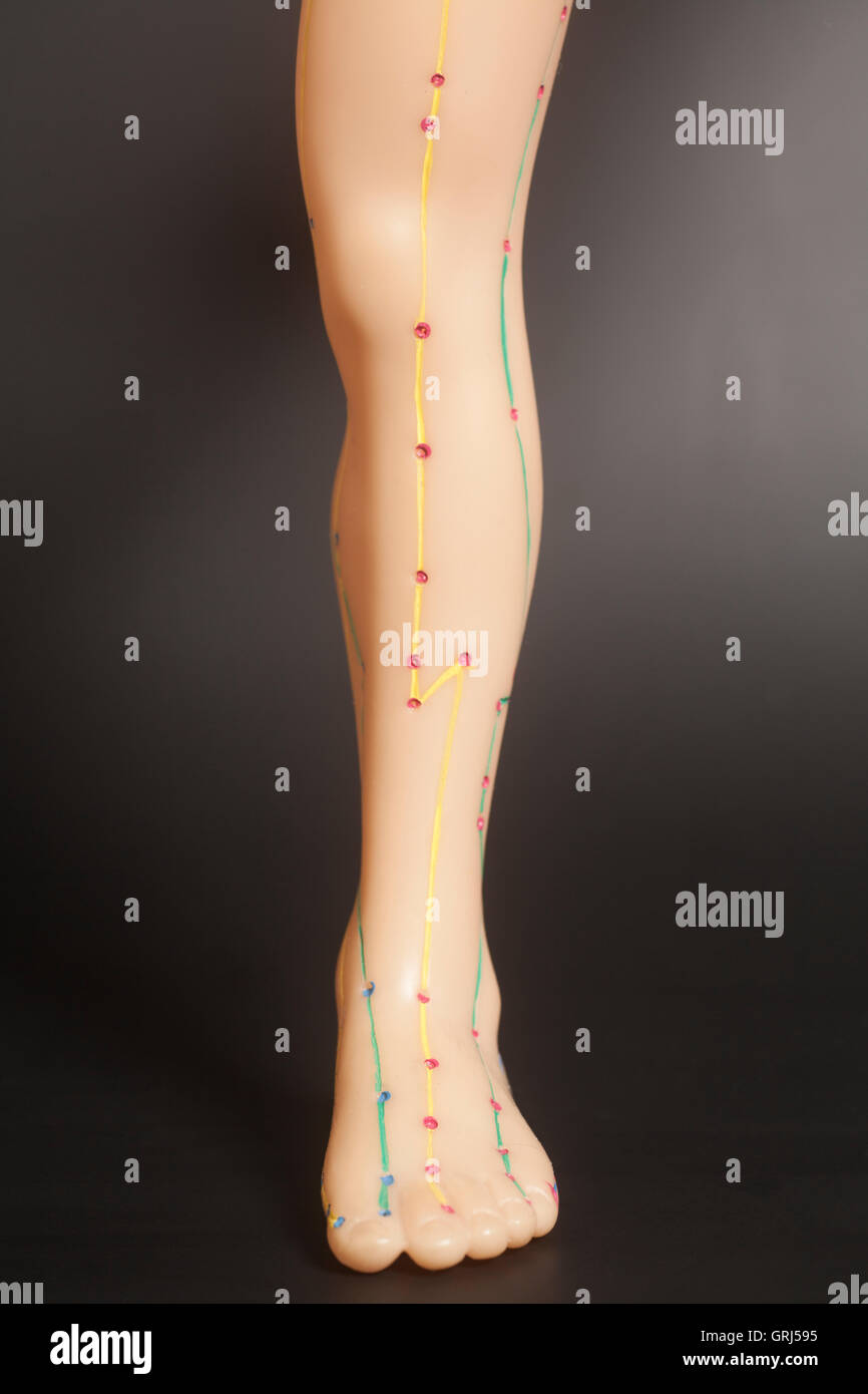 Medical acupuncture model of human feet on black background - Stock Image