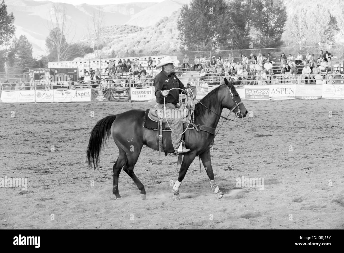 Cowboy warming up his horse at the rodeo, Snowmass, Colorado - Stock Image