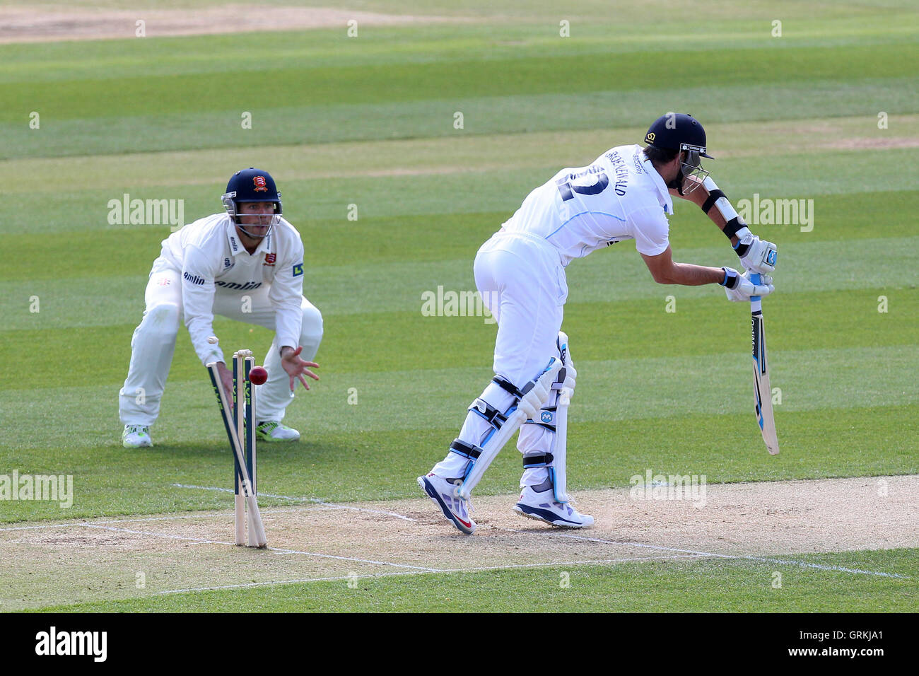 Tim Groenewald of Derbyshire is bowled out by David Masters - Essex CCC vs Derbyshire CCC - LV County Championship - Stock Image