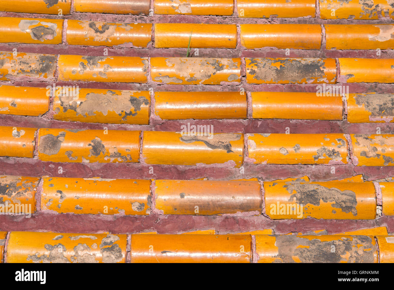 Roof Texture at Forbidden City in Beijing, China Stock Photo