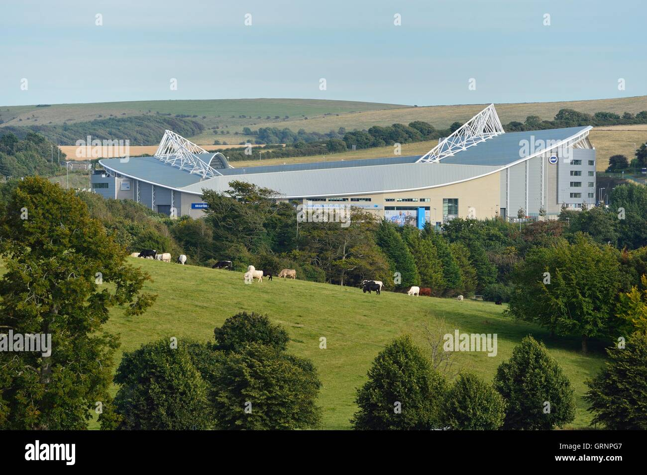 The Brighton football stadium American express, amex is framed by a more rural scene of cows grazing in a field - Stock Image