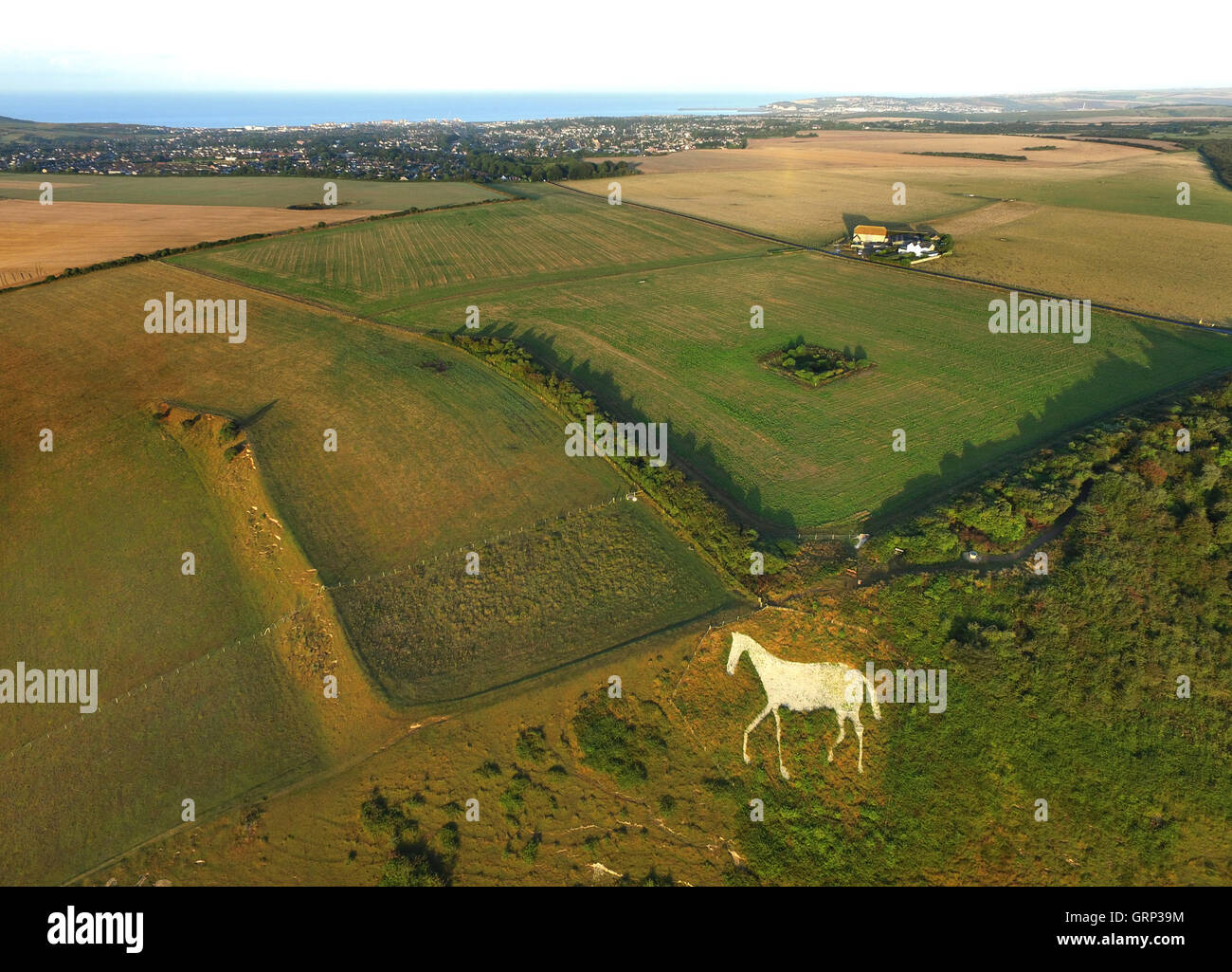 Aerial image of a white chalk horse cut into the side on High and Over, Seaford, Sussex, in the South Downs National - Stock Image