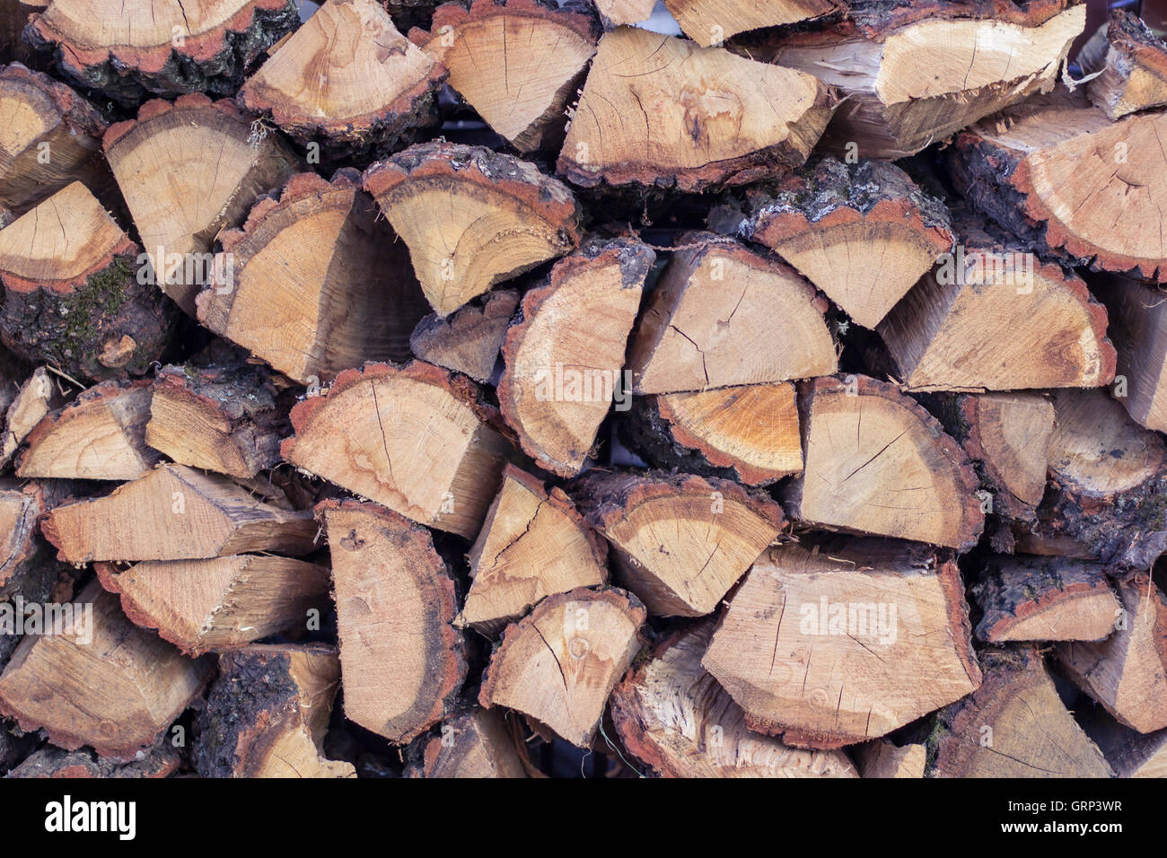 Dry wooden logs placed in cord natural background - Stock Image