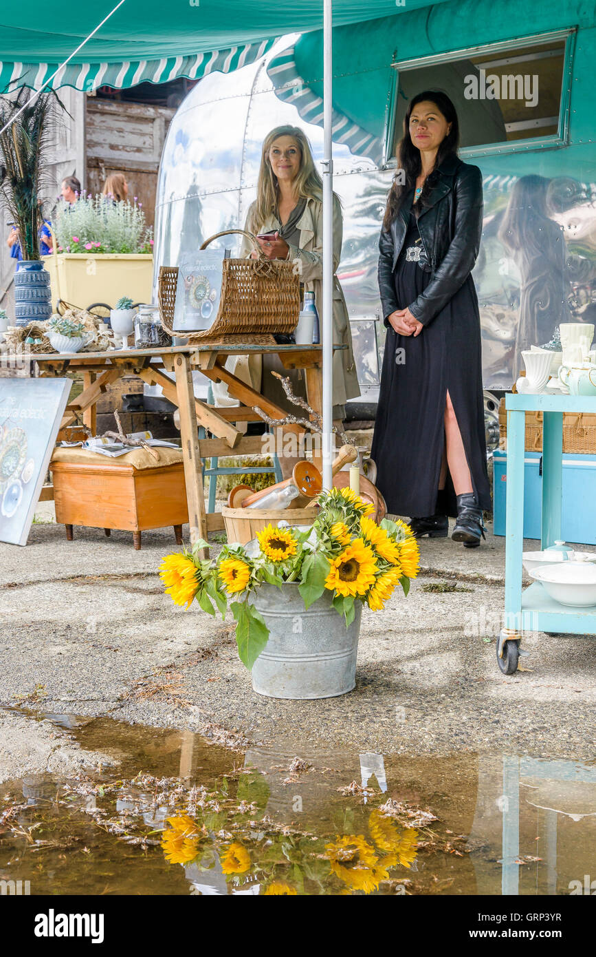 Collectibles booth, Deja Vu Vintage Market, Wellbrook Winery, Delta, British Columbia, Canada - Stock Image