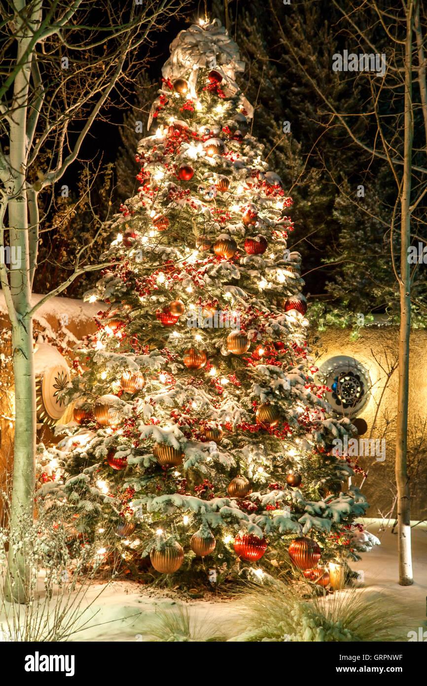 christmas tree covered in snow inn at loretto hotel santa fe new mexico - Christmas In Santa Fe