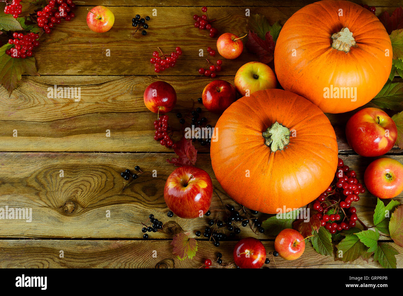 thanksgiving background with pumpkins berries and apples stock