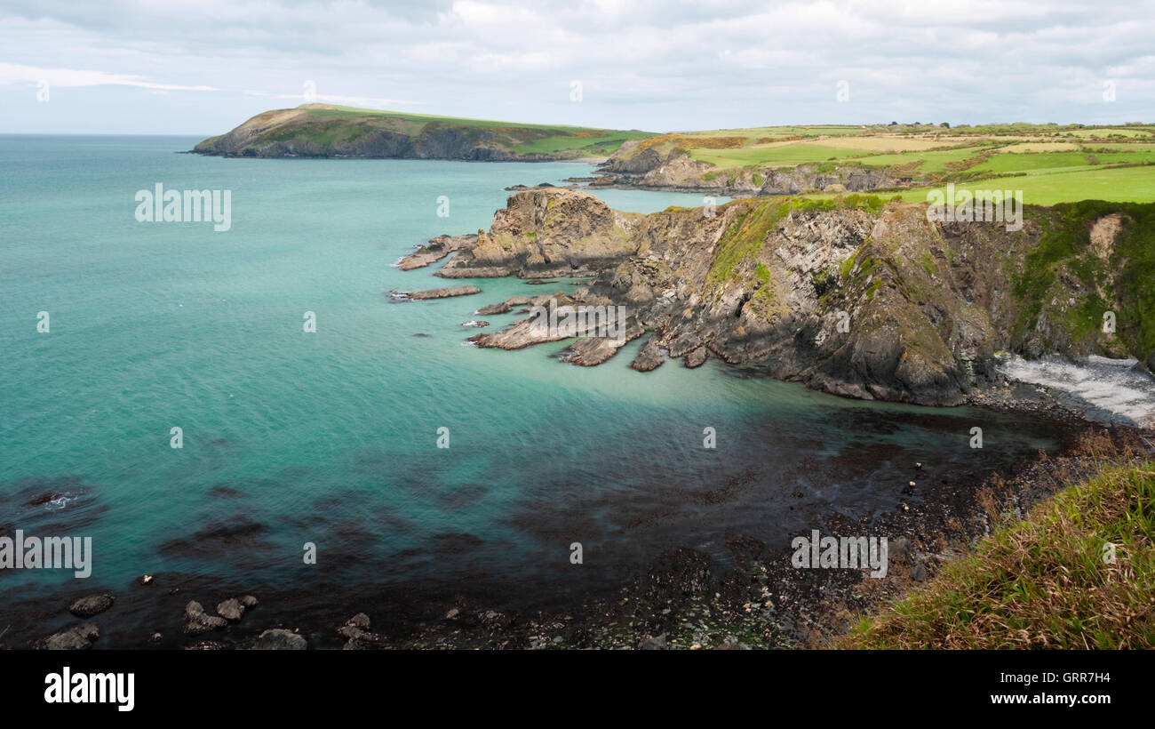 View to Dinas Island and Dinas Head on the Pembrokeshire Coast Path north east of Fishguard - Stock Image