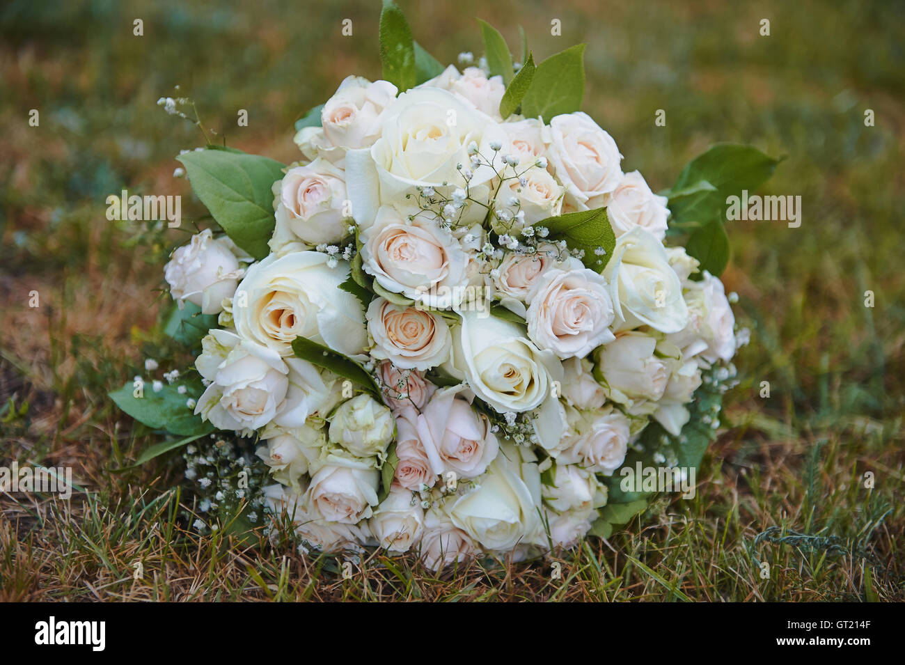 Cream flowers with Babies Breath