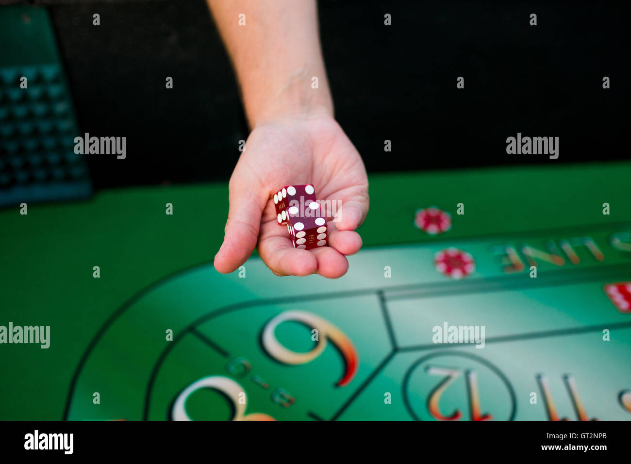 Holding Dice At Craps Table - Stock Image
