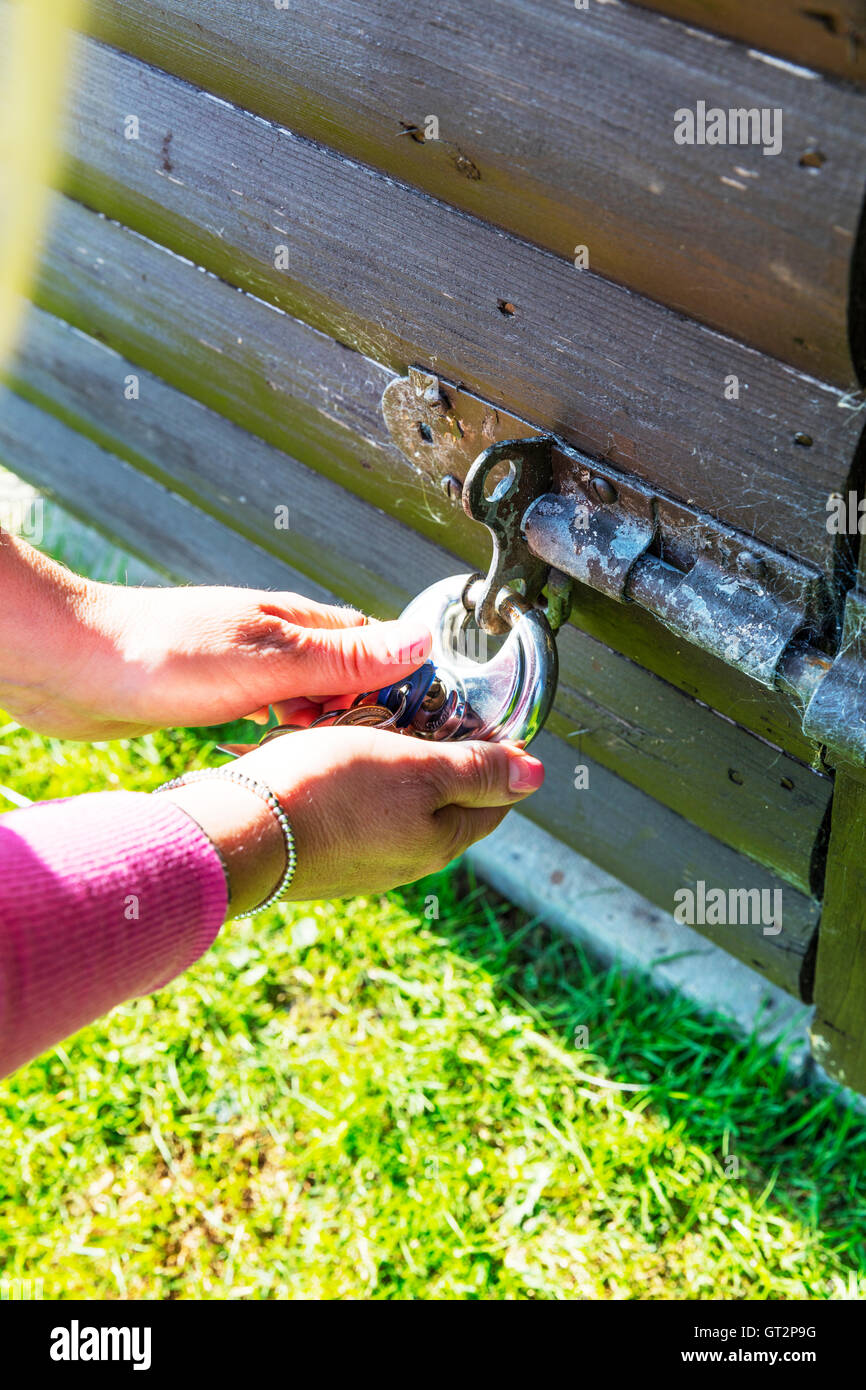 opening padlock security on shed secure lock locking padlock key turning key to open lock UK England GB - Stock Image