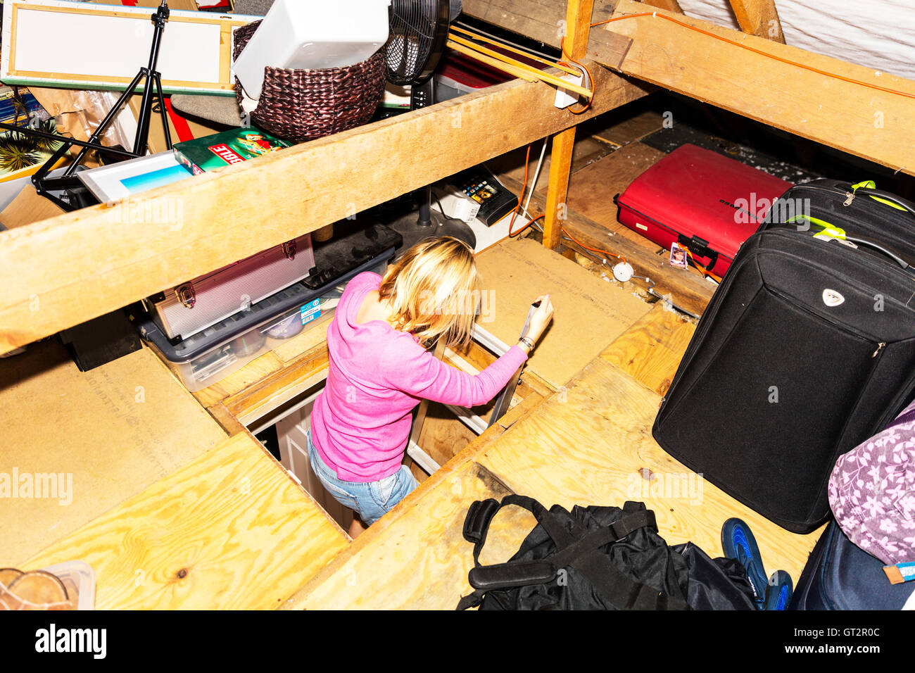 Woman climbing in to loft attic space loft ladder ladders into loft UK England lofts space spaces - Stock Image