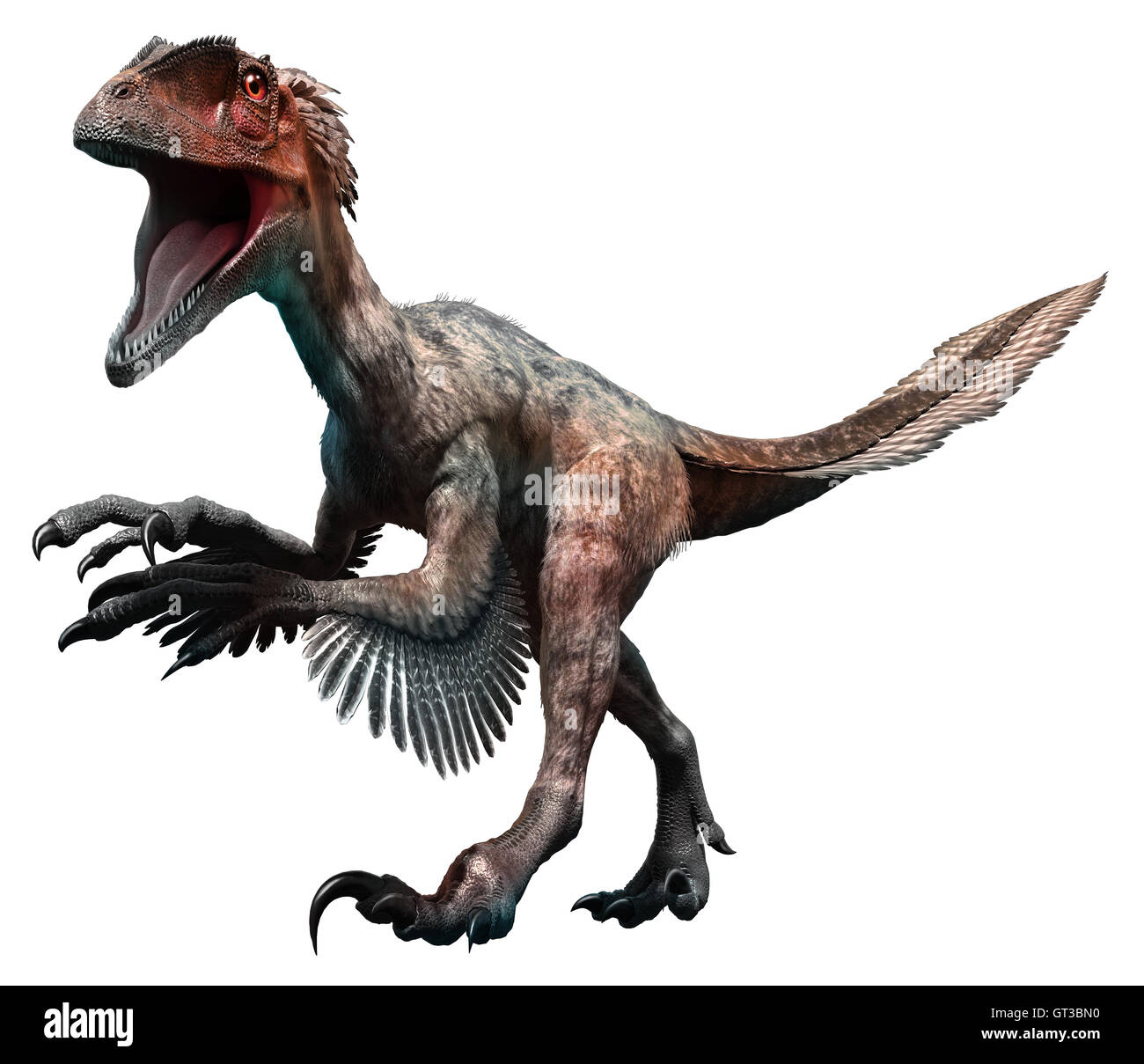 Deinonychus - Stock Image