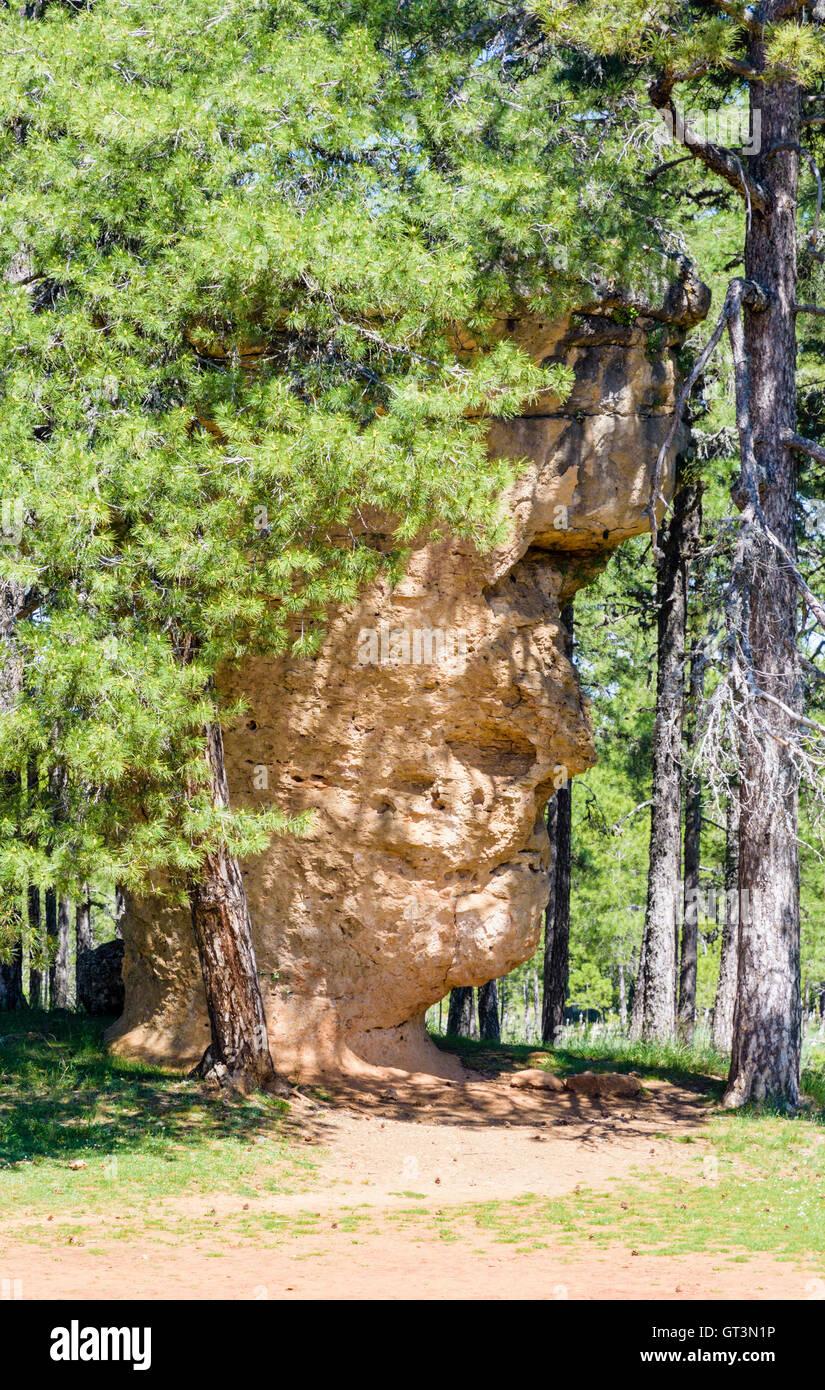 Rock formation shaped by erosion, called La Cara del Hombre - The Man's Face - in La Ciudad Encantada, Castilla - Stock Image