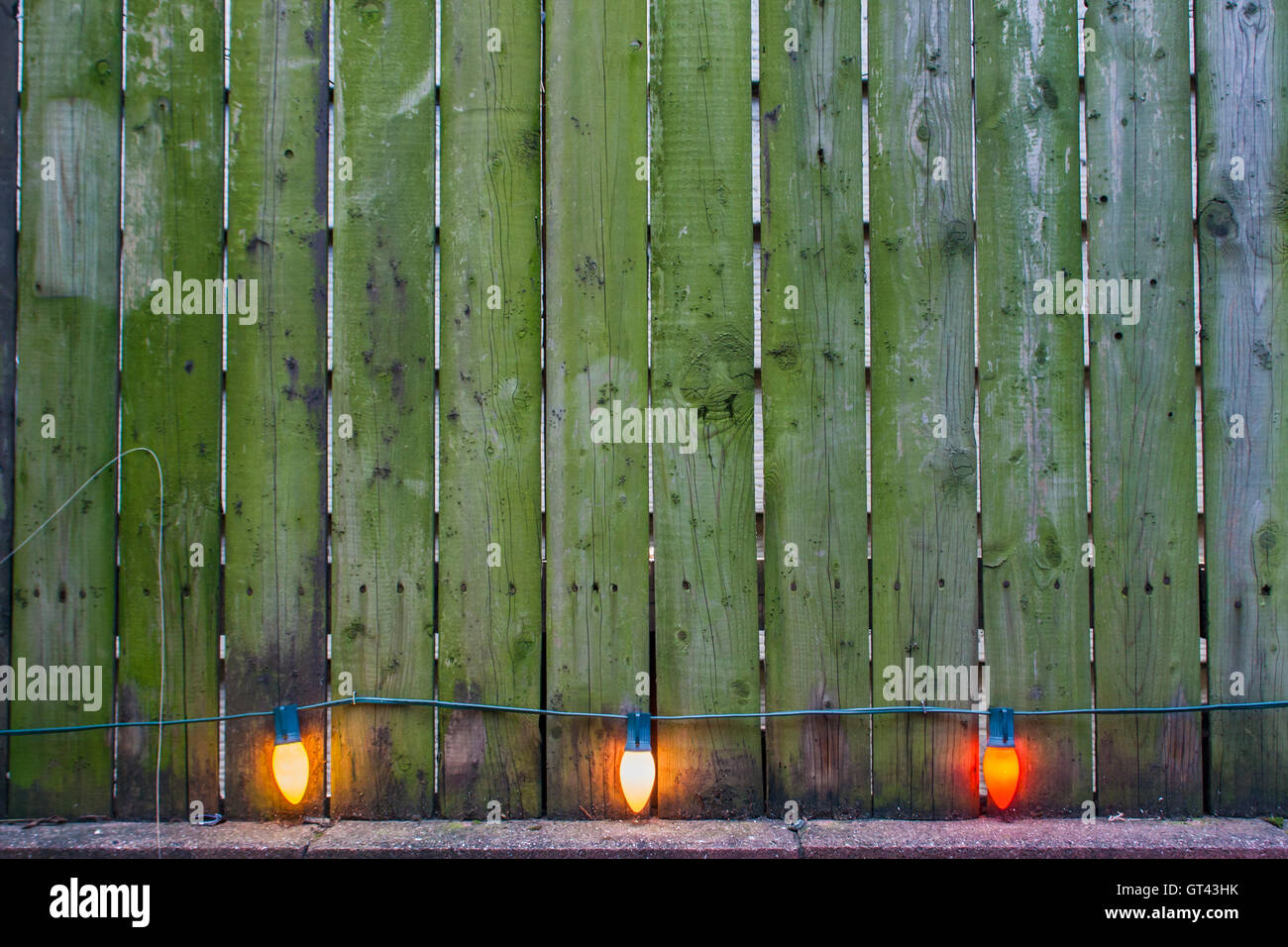 Colorful bulbs by the wooden fence in the backyard Stock Photo