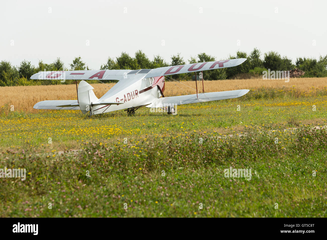 De Havilland Hornet Moth bi plane G-ADUR landing on grass airstrip airfield. Unsharpened Stock Photo
