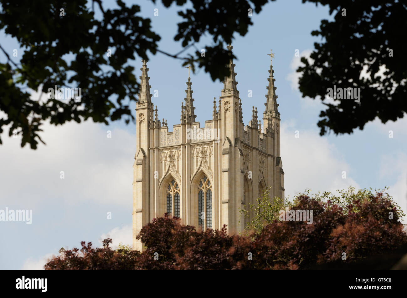 Stone tower and finials of St Edmundsbury Cathedral Bury St Edmunds, Suffolk, framed by trees. Unsharpened - Stock Image