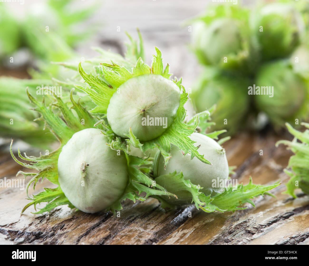 Young hazelnuts on the wooden table. - Stock Image