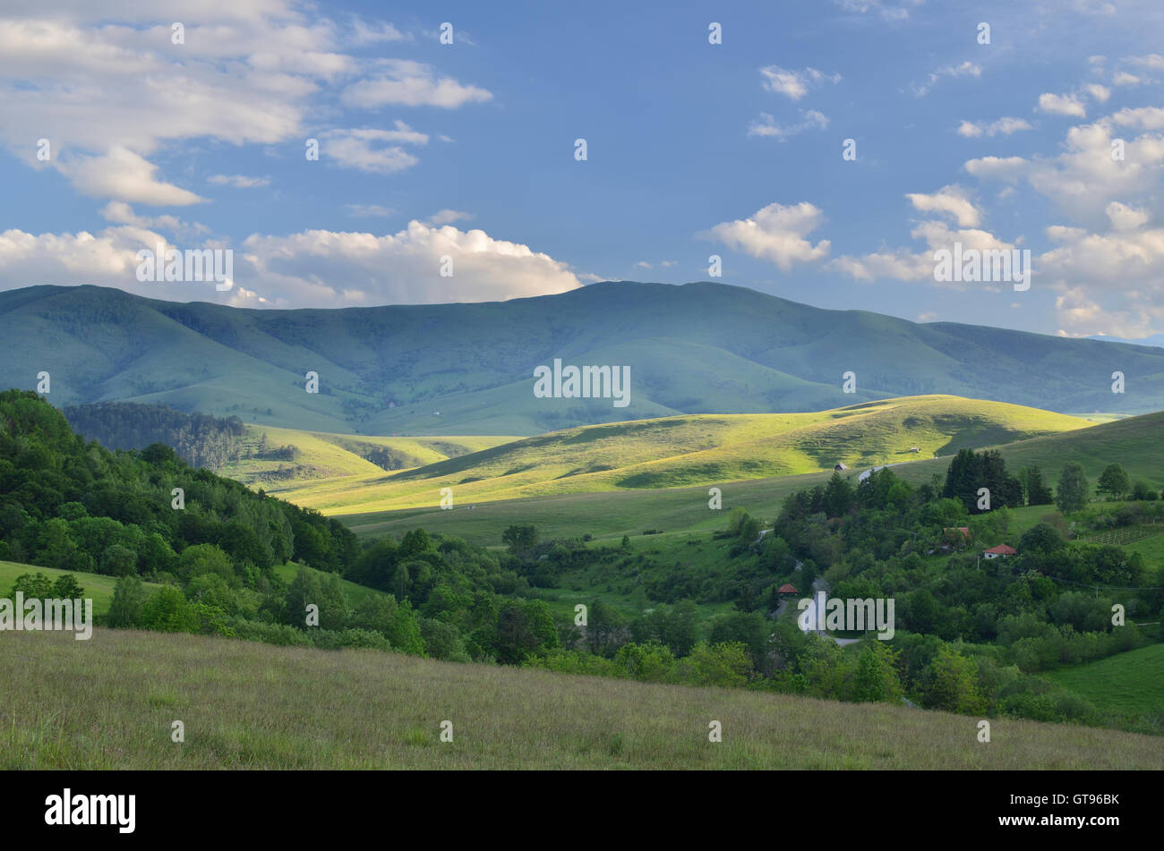 Landscape of Zlatibor Mountain. Green meadows and hills under blue sky with some clouds - Stock Image