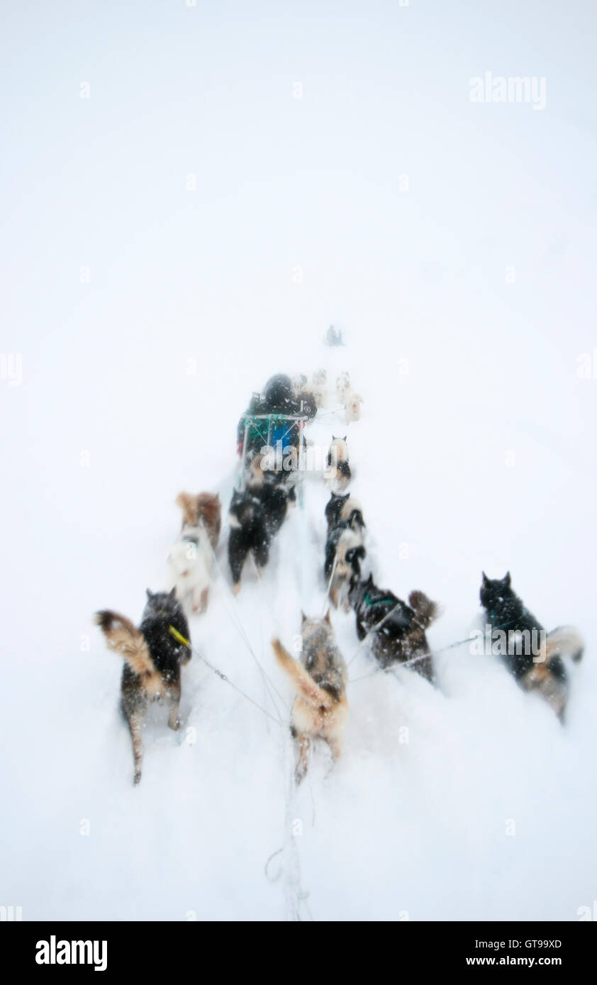 Kulusuk. Greenland. - Stock Image
