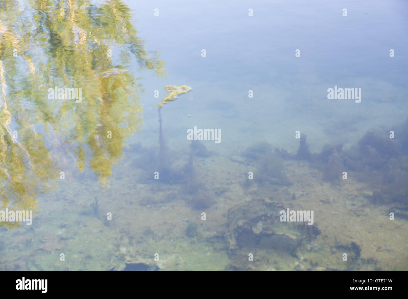 Shot of lake scenic in summer. Blurred nature unfocused background. - Stock Image