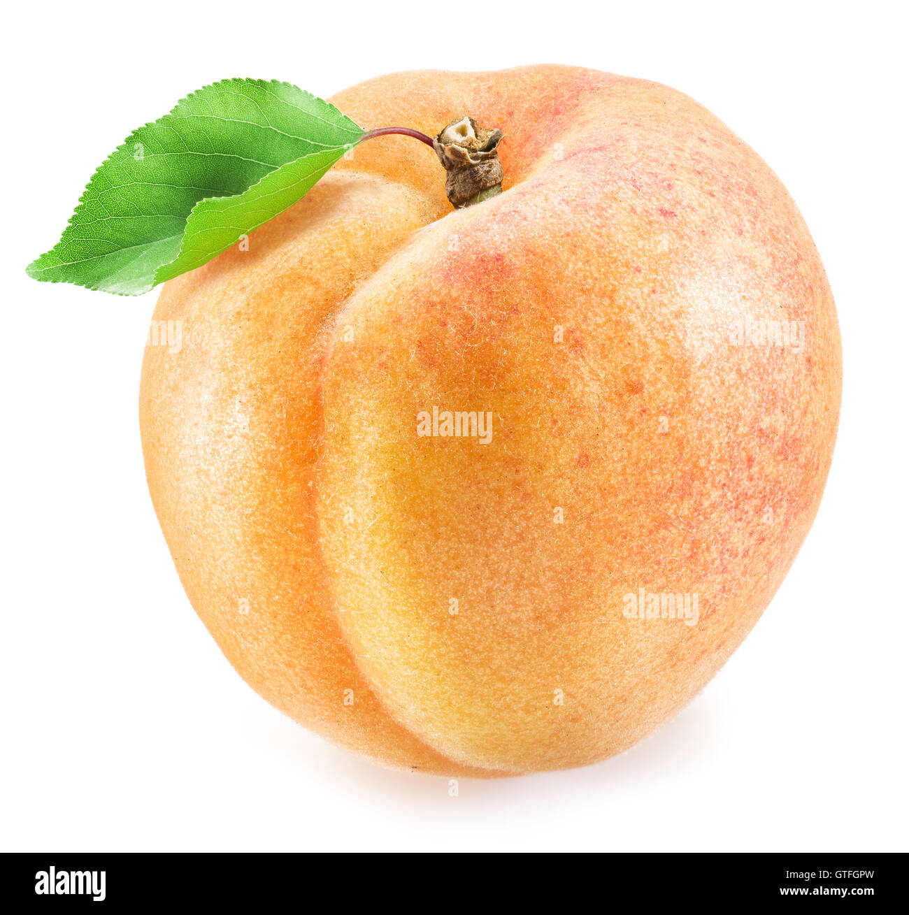 Ripe apricot fruit. Clipping paths. - Stock Image