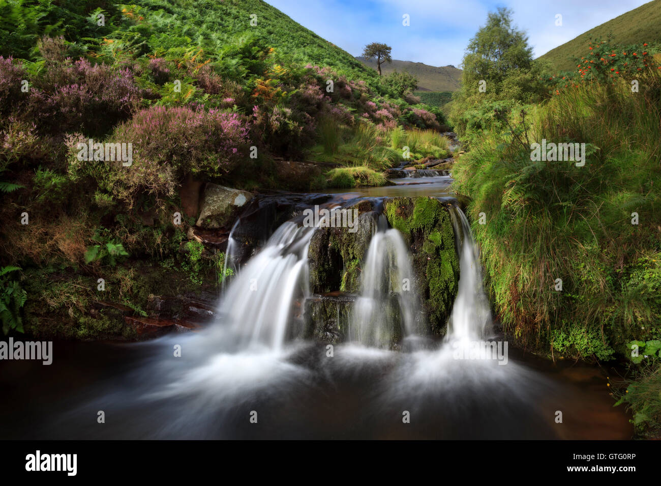 Fairbrook in the Peak District - Stock Image