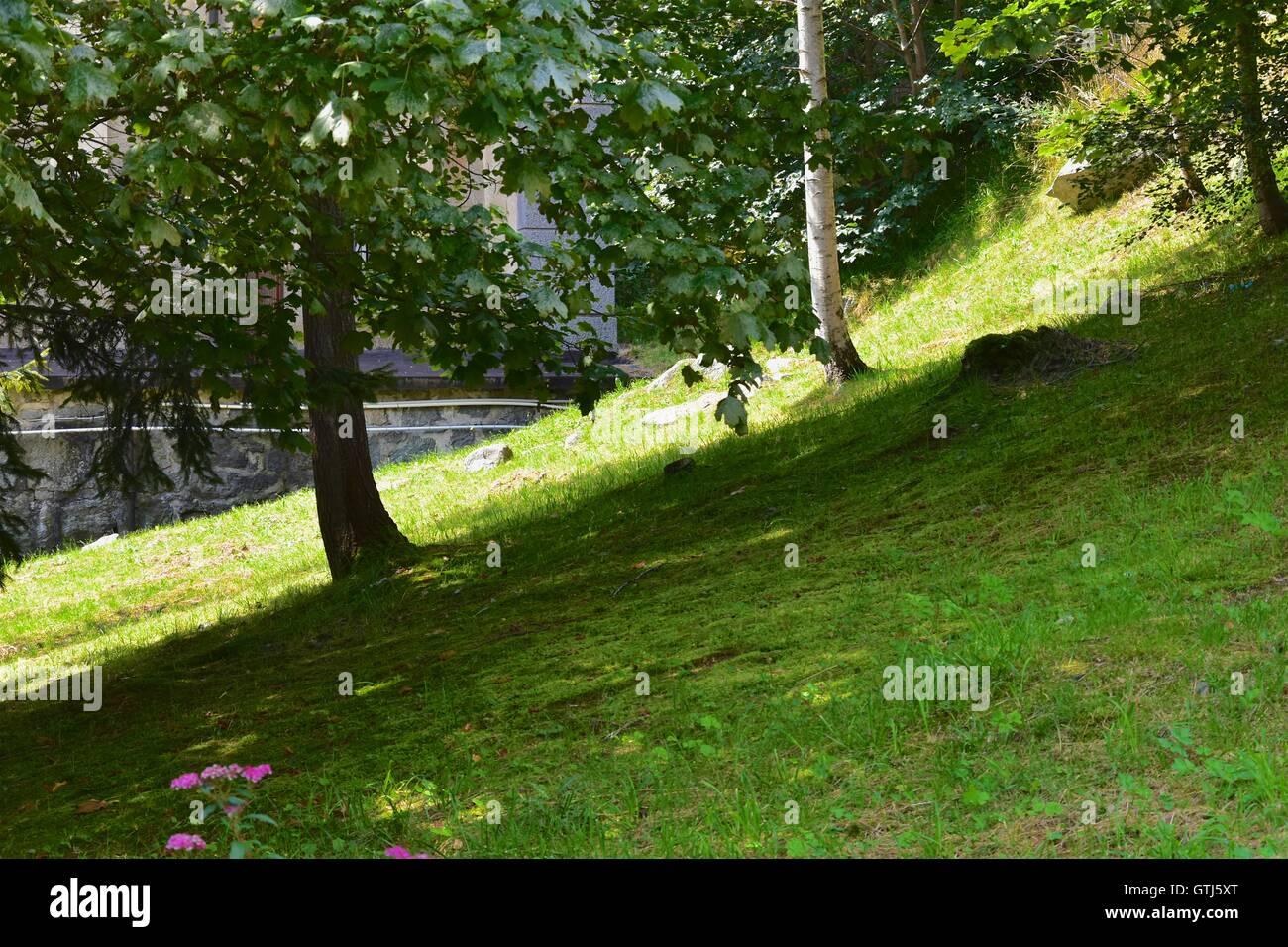 Gorgeous and elegant Italian garden. Piedmont, Italy. Marco Imazio  © Stock Photo