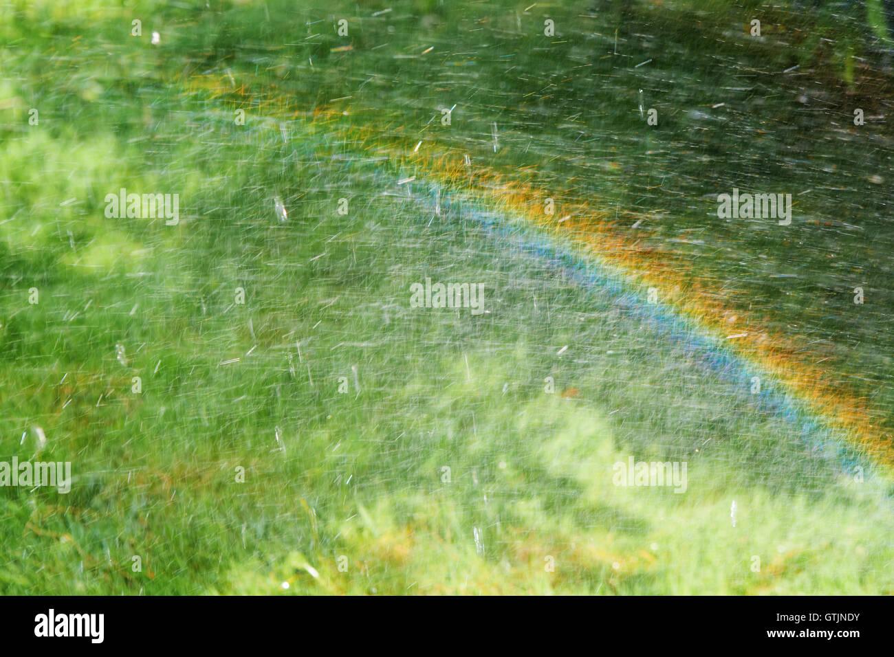 rainbow on the meadow - Stock Image