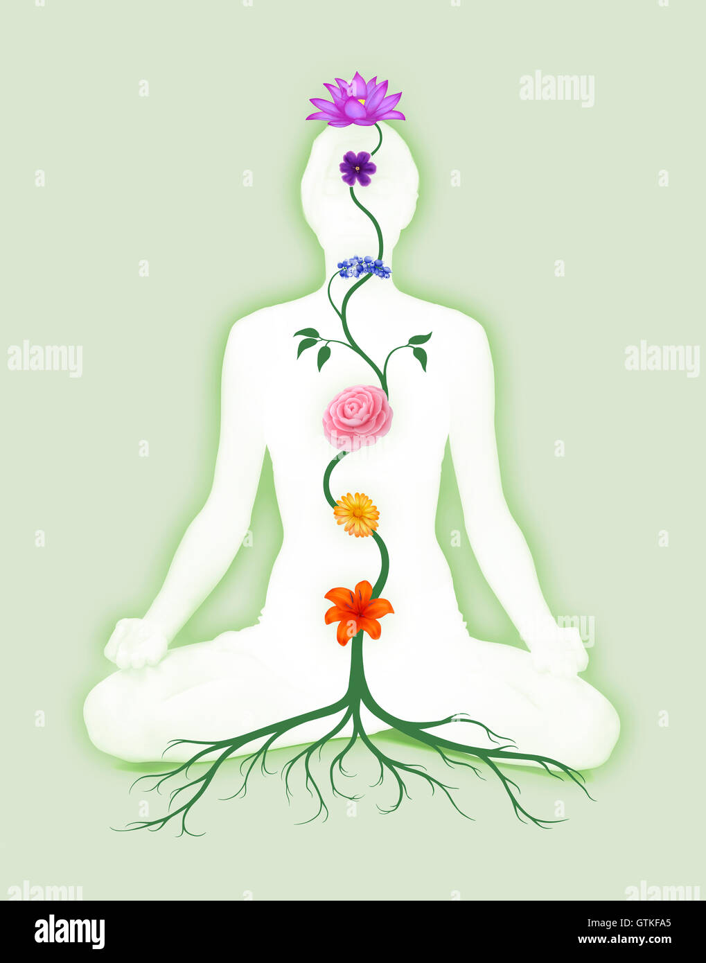 Woman sitting in lotus pose with seven chakra symbols represented as associated with chakras flowers and colors - Stock Image