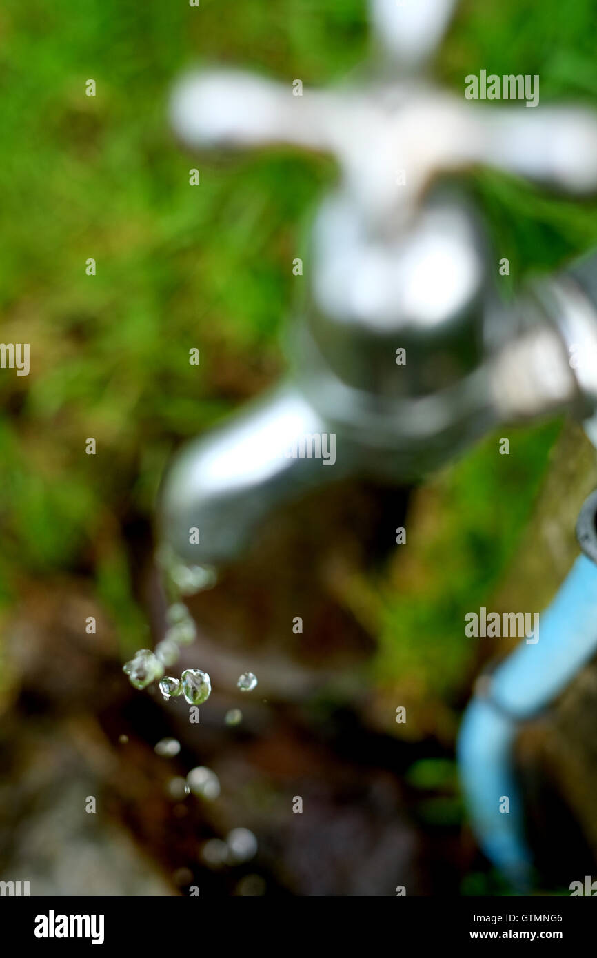 Water Dripping from a tap outdoors with green grass - Stock Image