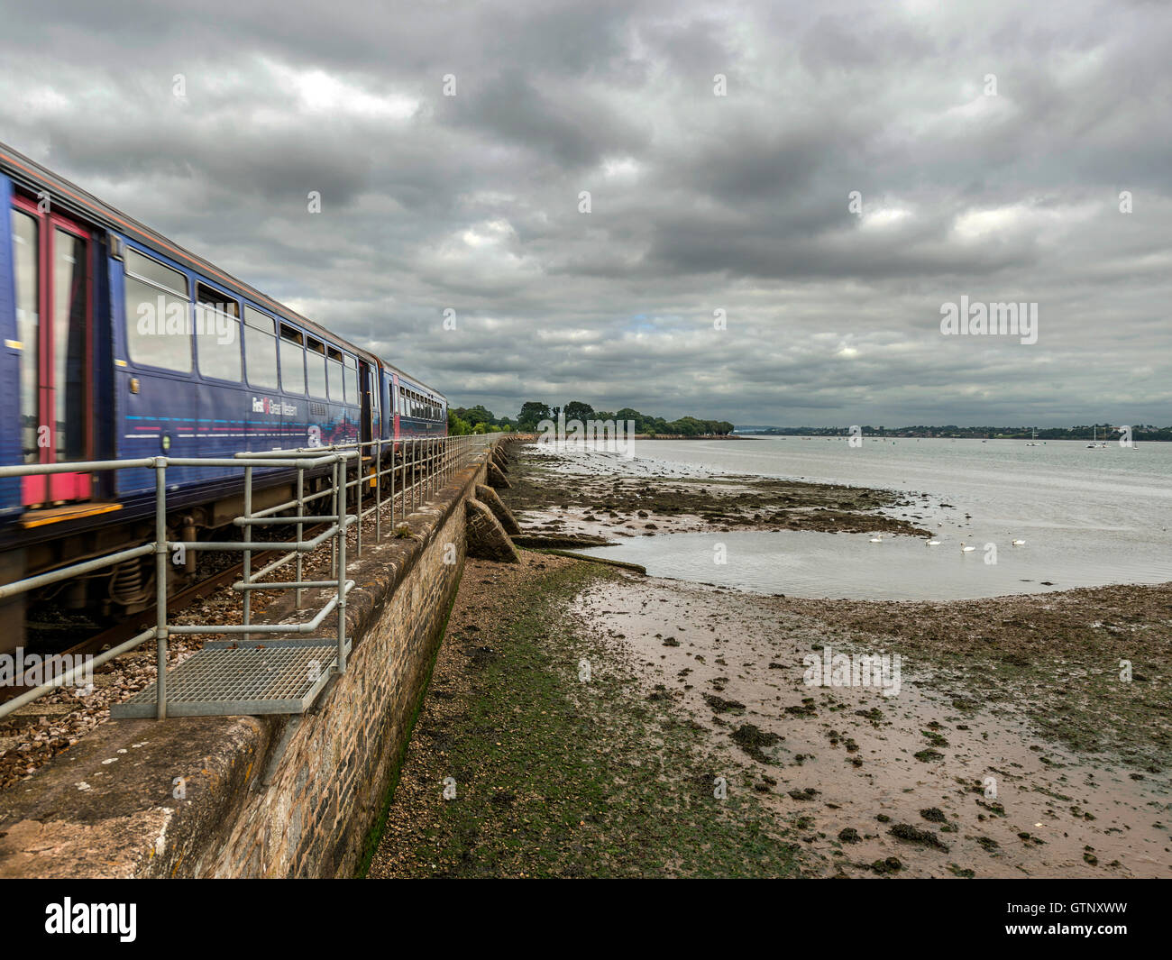 Landscape depicting picturesque First Great Western Riviera railway line along River Exe at Powderham, with passing - Stock Image