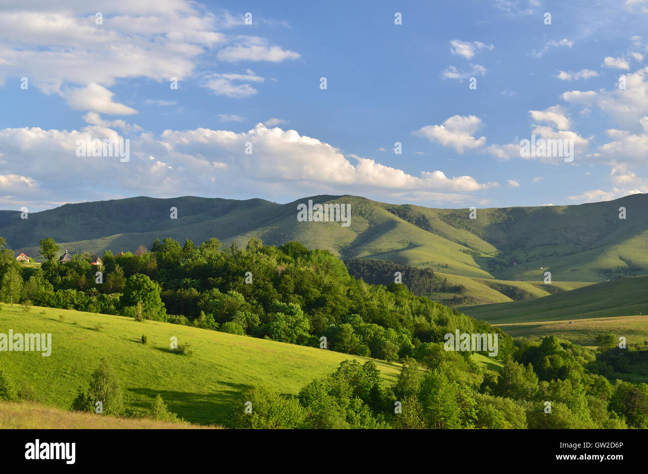 Landscape of Zlatibor Mountain. Green meadows and hills under blue sky with clouds in springtime - Stock Image