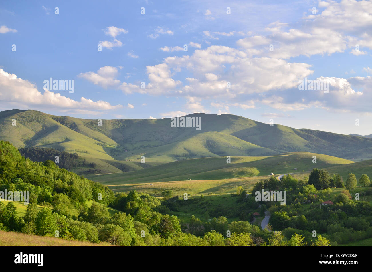 Landscape of Zlatibor Mountain. Green meadows and hills under blue sky with some clouds in springtime - Stock Image
