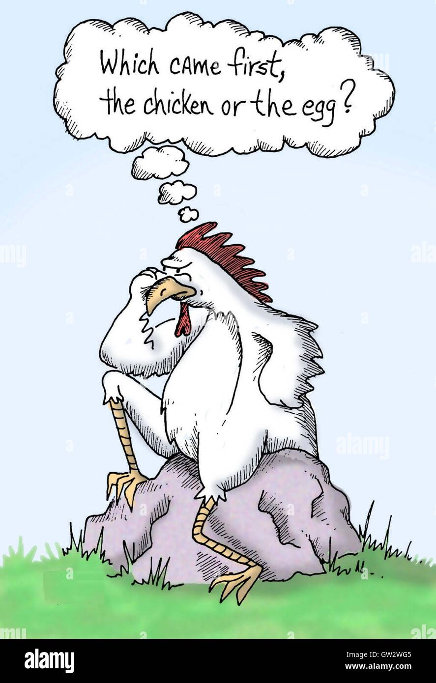 The Thinking Rooster - Stock Image
