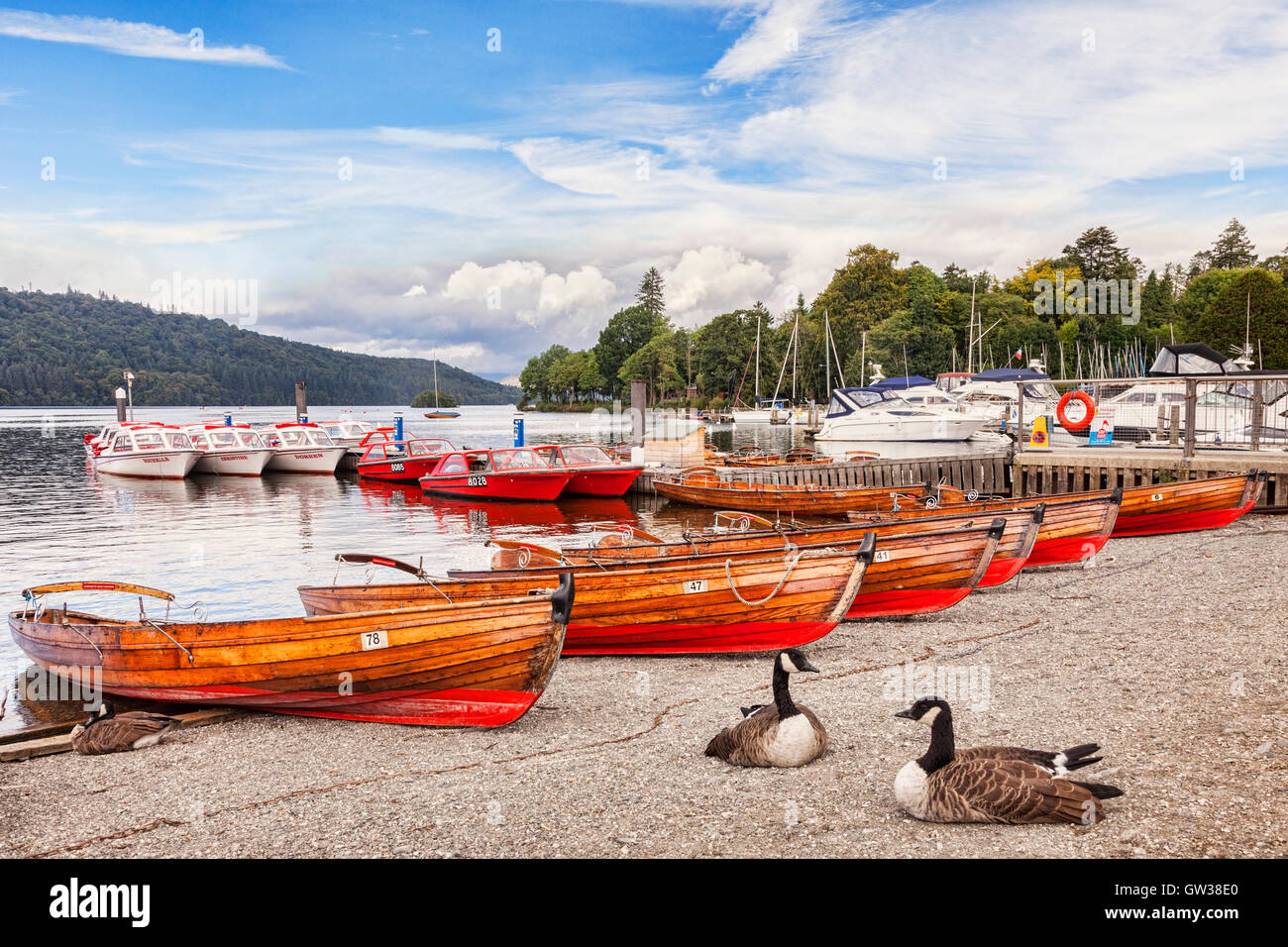 Boats for hire on the shore of Lake Windermere, Lake District National Park, Cumbria, England, UK - Stock Image