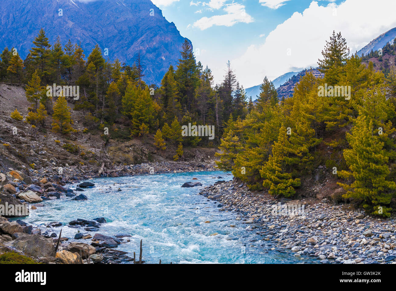 Landscape Fast Mountains River Hiking Himalayas.Beautiful View Waterfalls Asia End Summer Season Background.Green - Stock Image