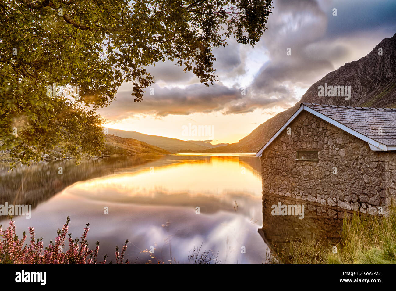View of Llyn Ogwen Lake at sunrise with blu sky. House in the lake and tree. - Stock Image