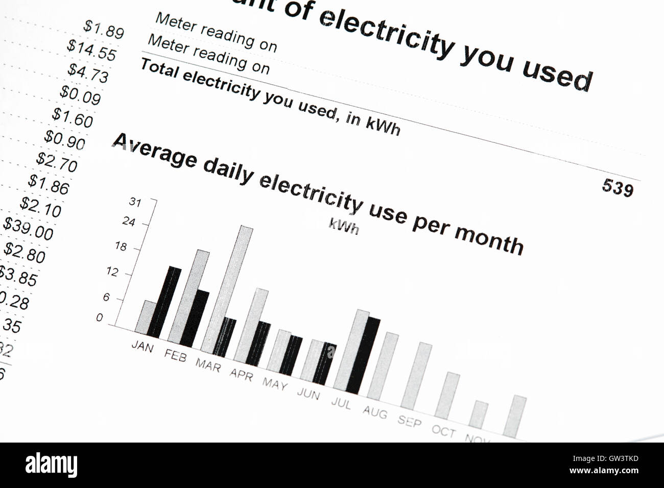 Close up of charges for electricity services on statement - Stock Image