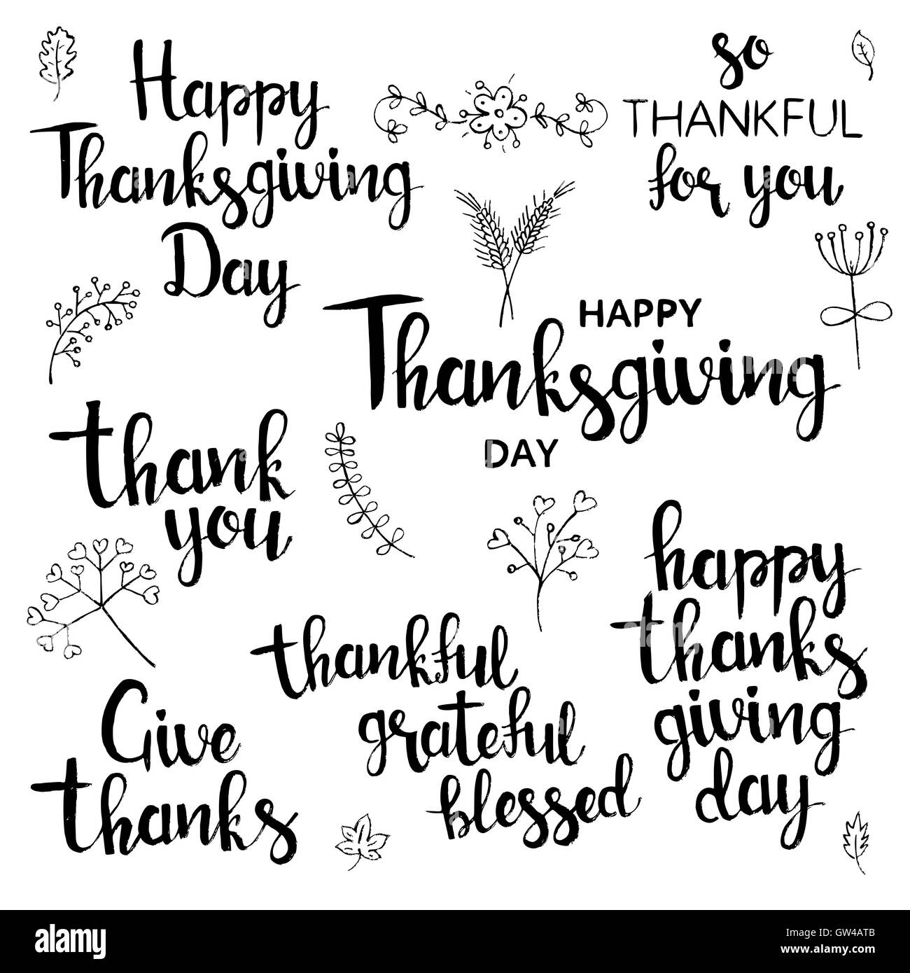 Happy Thanksgiving Day Lettering Set Modern Vector Hand Drawn Calligraphy With Wheat Flowers Leaves Branches And Berries