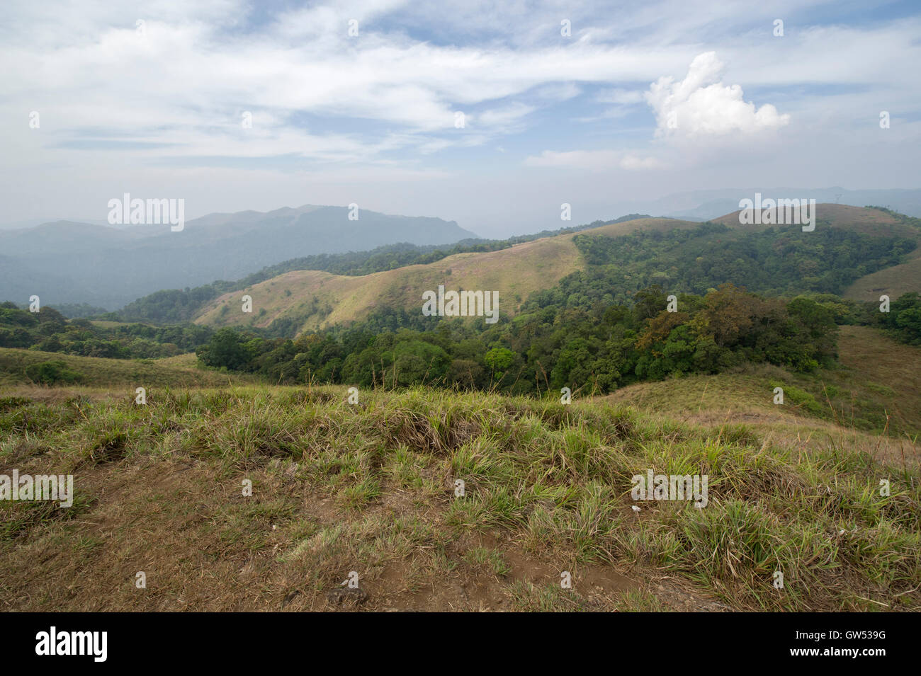 Looking over the mountains and jungle of the Periyar Tiger Reserve in the foothills of the Western Ghats near Thekkady - Stock Image
