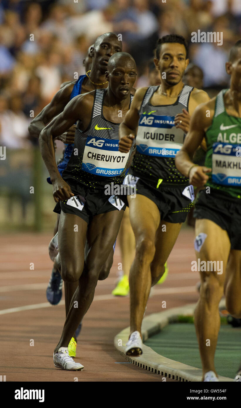 BRUSSELS, BELGIUM - SEPTEMBER 9:  Timothy Cheruiyot competing in the Men's 1500m at the AG Insurance Memorial - Stock Image