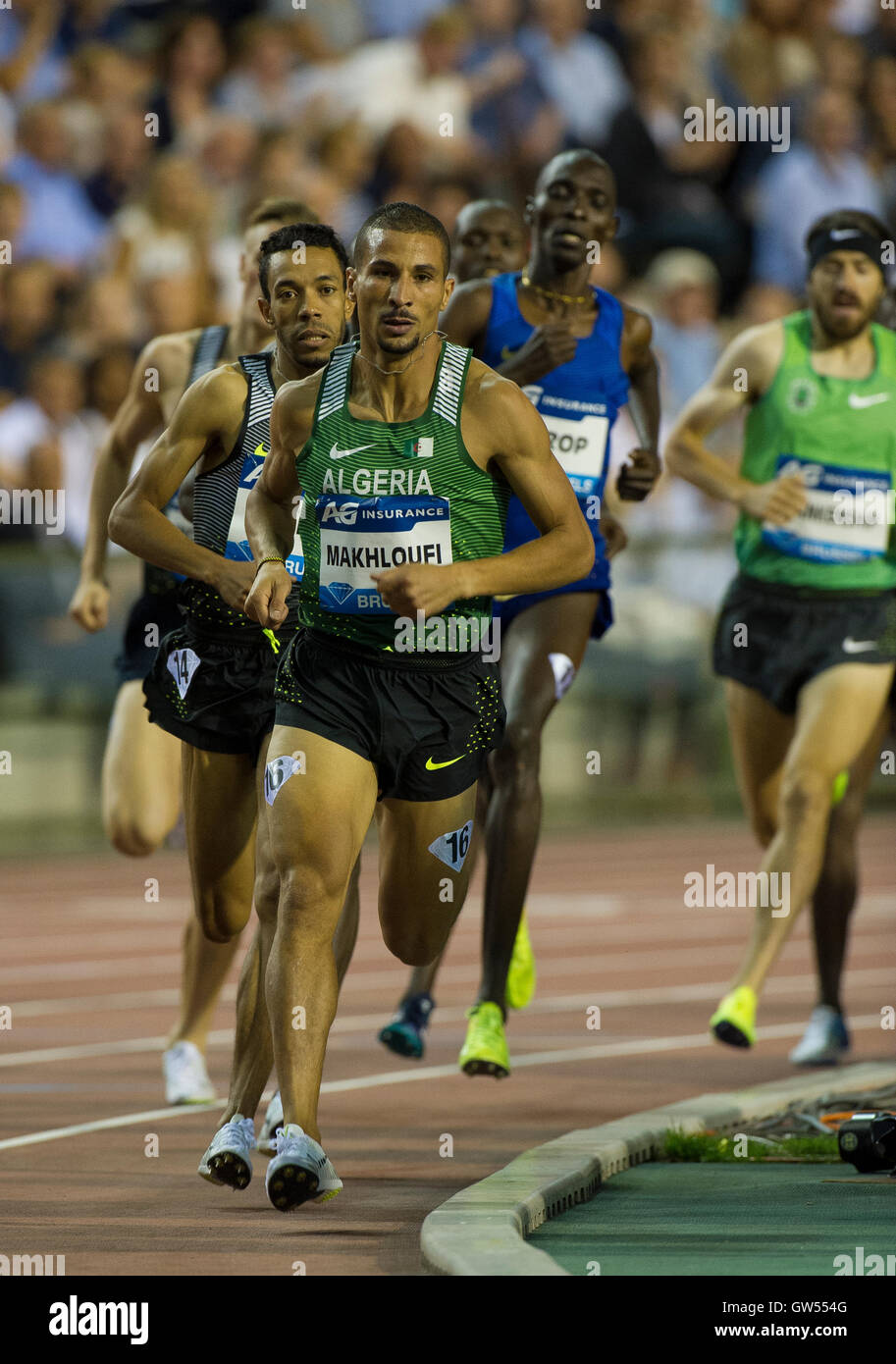 BRUSSELS, BELGIUM - SEPTEMBER 9:  Taoufik Makhloufi competing in the Men's 1500m at the AG Insurance Memorial - Stock Image