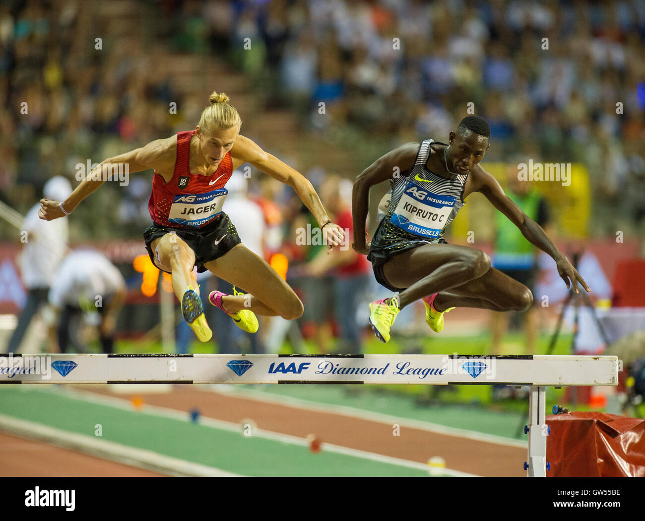 BRUSSELS, BELGIUM - SEPTEMBER 9: Evan Jager _ Conseslus Kipruto competing in the men's 3000m Steeplechase at - Stock Image