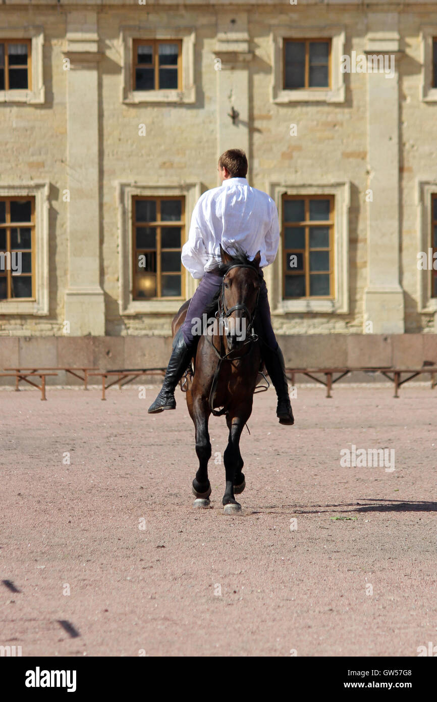 trick riding to men at bay stallion who jumps at a trot on the sand square in front of the palace. - Stock Image