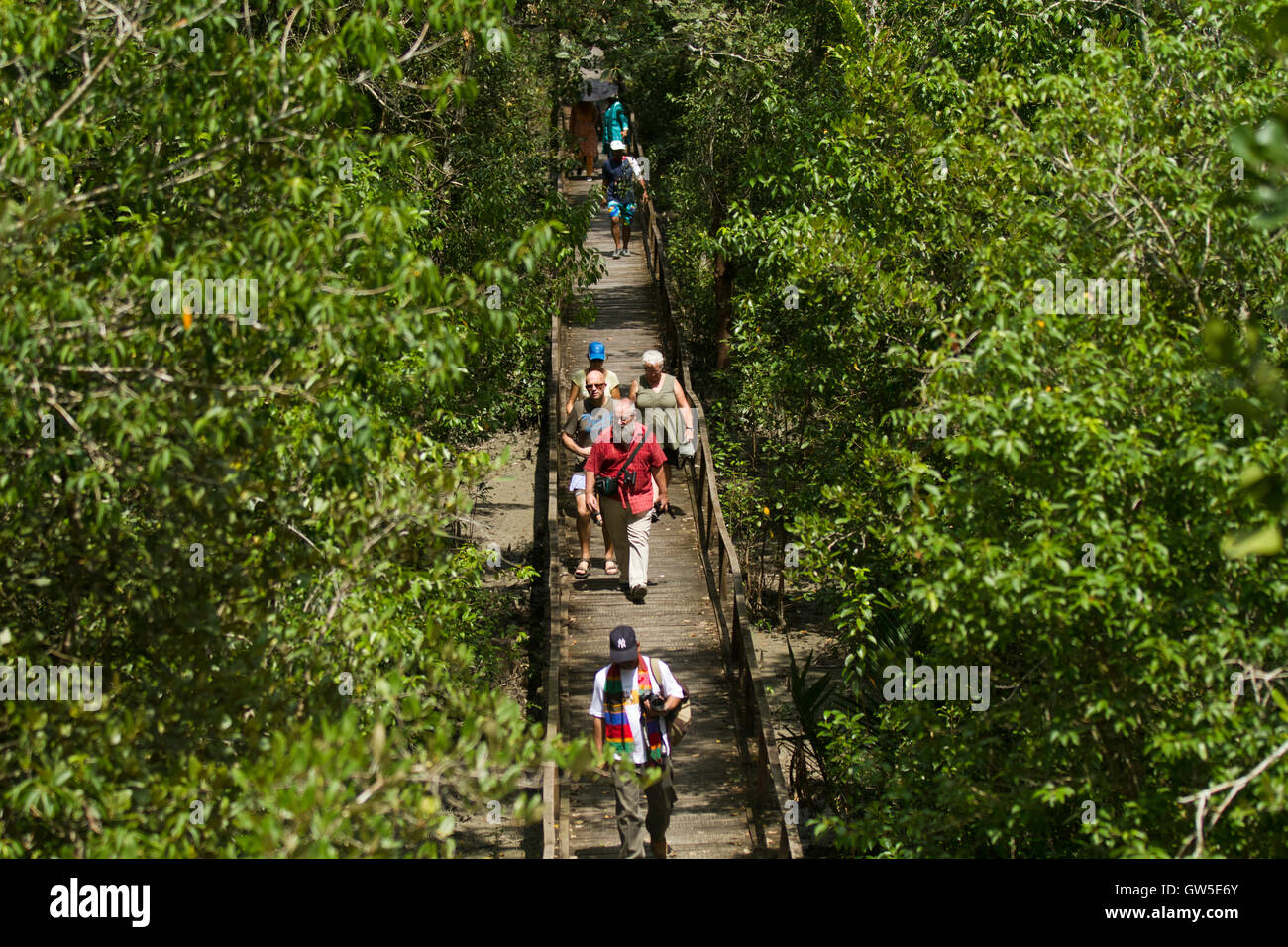 Ecotourism in the Sundarban