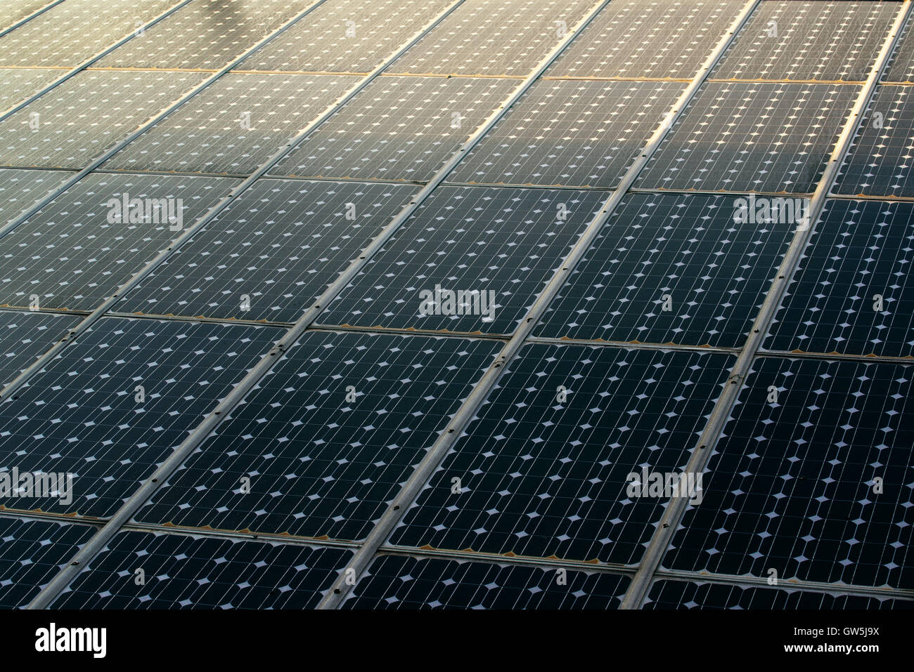 Sunlight on solar panels photovoltaic cell modules - Stock Image