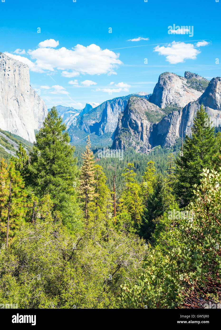 Yosemite National Park, California, panoramic view of the valley with the El Capitan and the Cathedral Spires mountains Stock Photo